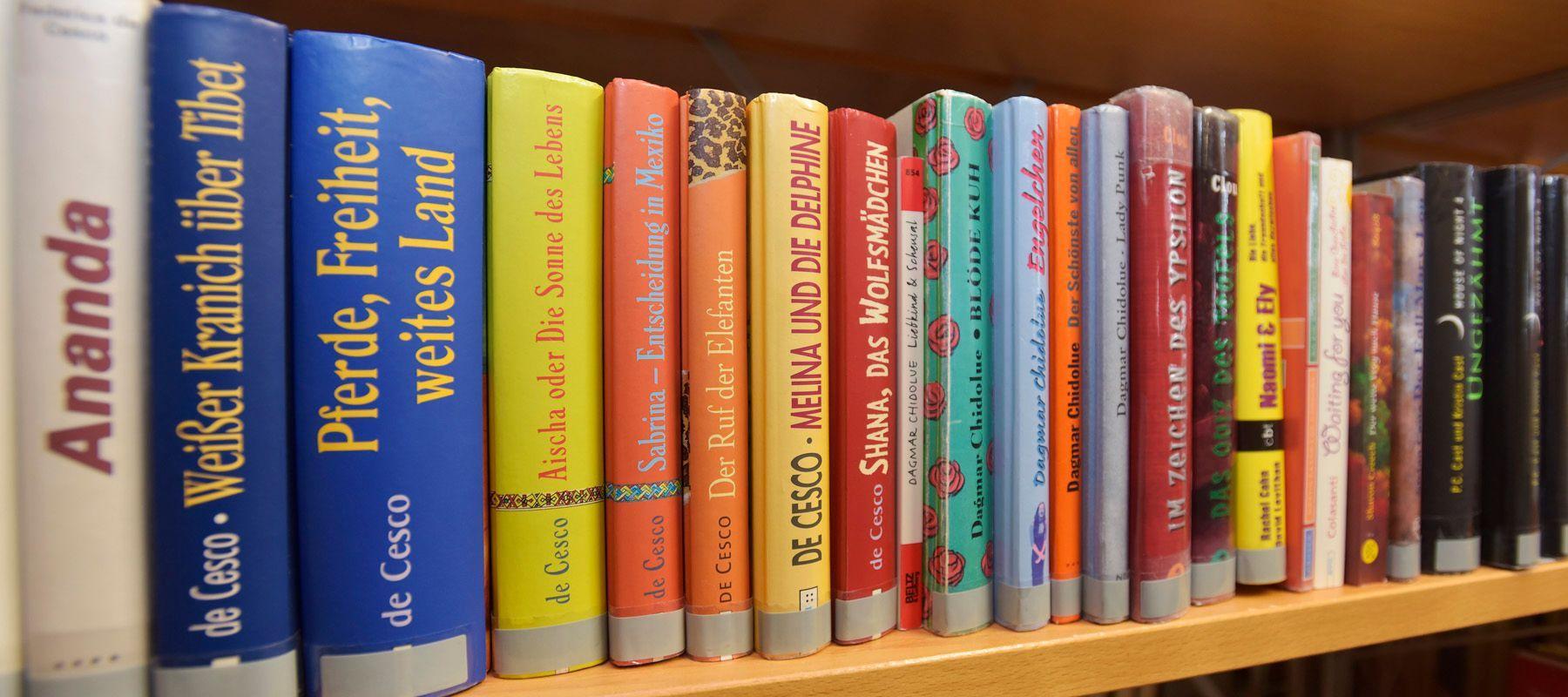 Bücherregal in der Kinder- und Jugendbibliothek Hüfingen
