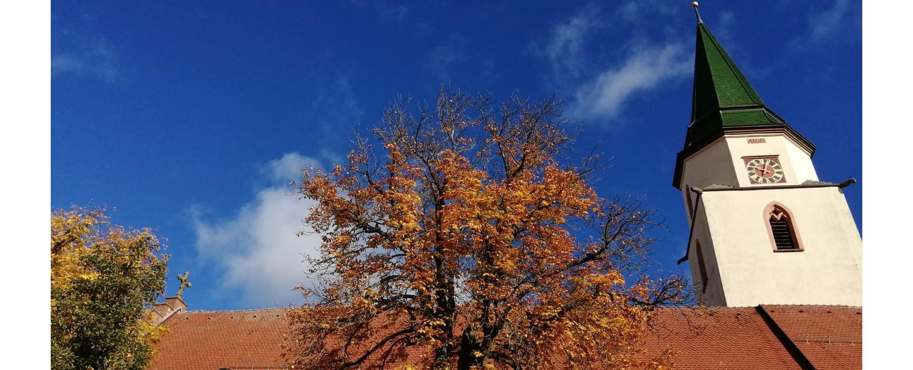 Kirchturm und Bäume mit Herbstlaub